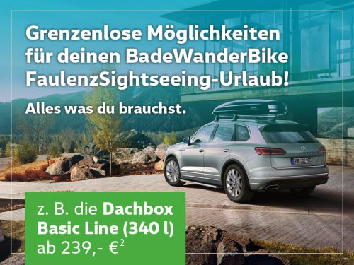 dachbox_klein